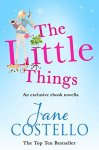 Book Review: The Little Things by Jane Costello (mini review)