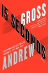 Guest Review: 15 Seconds by Andrew Gross.