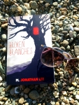Book Review: Broken Branches, by M Jonathan Lee.